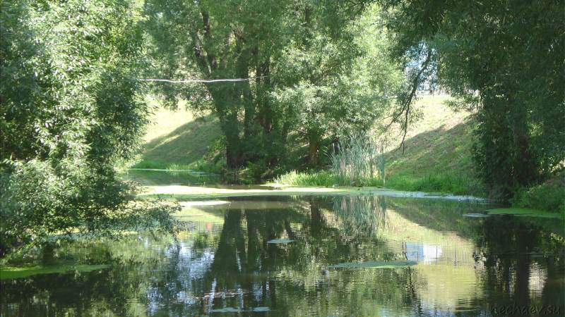 Река Псёл в парке